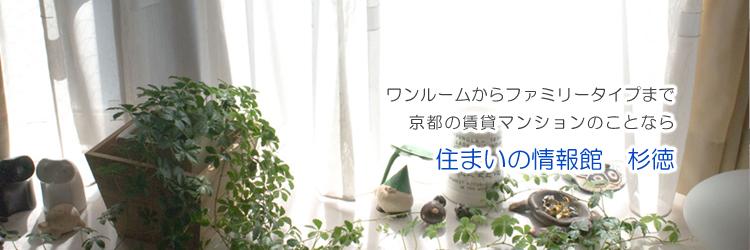 ワンルームからファミリータイプまで京都の賃貸マンション情報なら杉徳